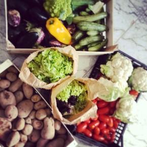 Foodsharing: a Torino non si butta via niente