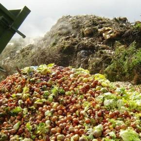 Il 5 febbraio è la Giornata mondiale di prevenzione dello spreco