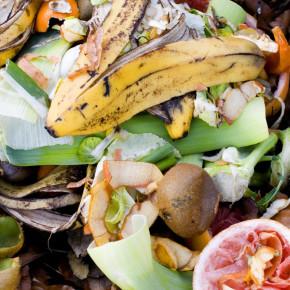 Dal digestore dell'Hard Rock Cafe di Londra alla guida di Federico Valerio, ecco due soluzioni per affrontare il problema dei rifiuti alimentari