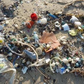"""Ripulire gli oceani dalla plastica: l'obiettivo della campagna """"CleanSeas"""" dell'ONU"""