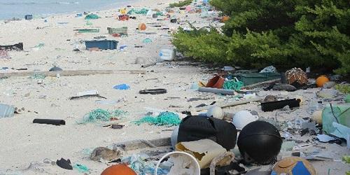L'atollo di Henderson, nel Pacifico del sud, un tempo era un paradiso terrestre. Ora è considerato essere l'isola più inquinata al mondo.