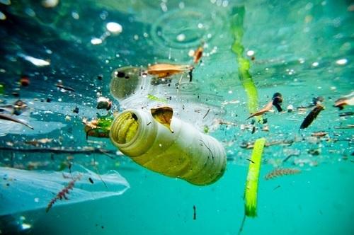 Circa il 79% della plastica prodotta annualmente viene dispersa nell'ambiente.