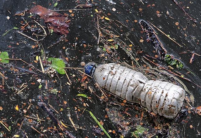 boittiglia plastica marine litter