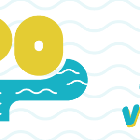 VisPO – Volunteer Initiative for a Sustainable Po, un azione per pulire il Po