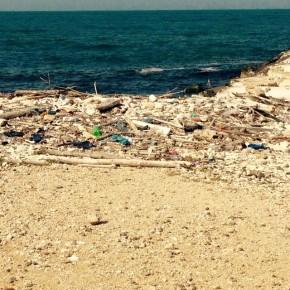"""""""Mare senza plastica"""" la campagna di informazione e pulizia promossa da AmbientePuglia"""