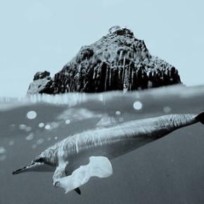Abbigliamento dai rifiuti in plastica: Adidas si accorda con Parley for the Oceans e il mare ringrazia