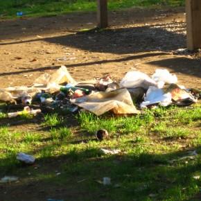 Parchi cittadini: li pulisce Adriano