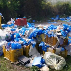 Alla Serr 2016 arriva Oikos: l'innovativa cassetta riutilizzabile per la riduzione degli imballaggi